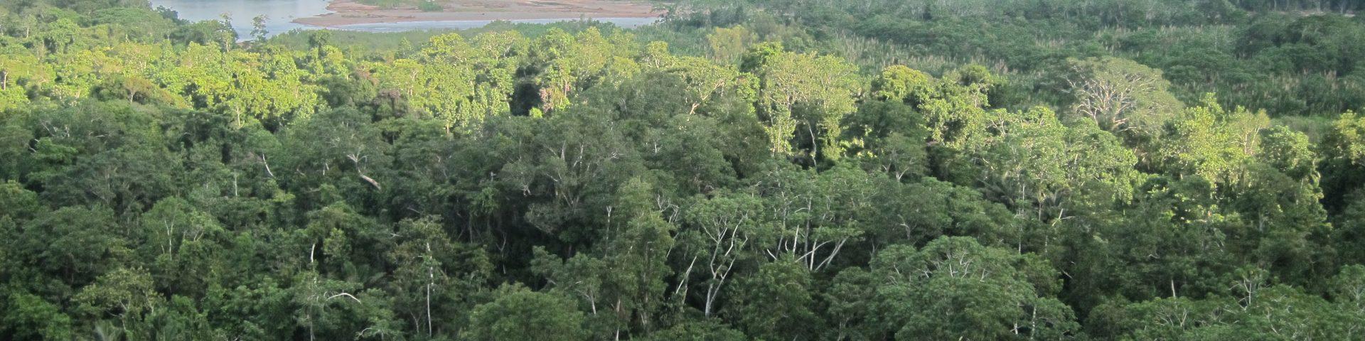 Madidi-Nationalpark