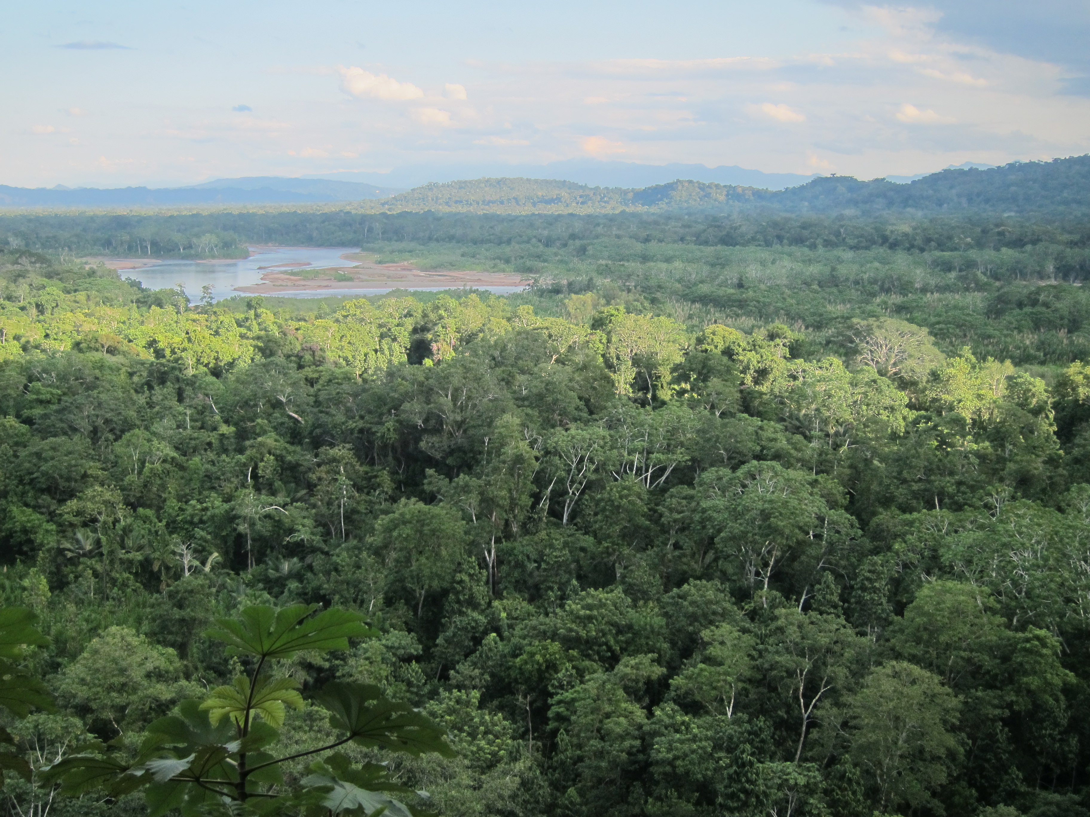 Madidi-Nationalpark